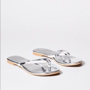 ✨✨NWT✨✨silver Loft sandals